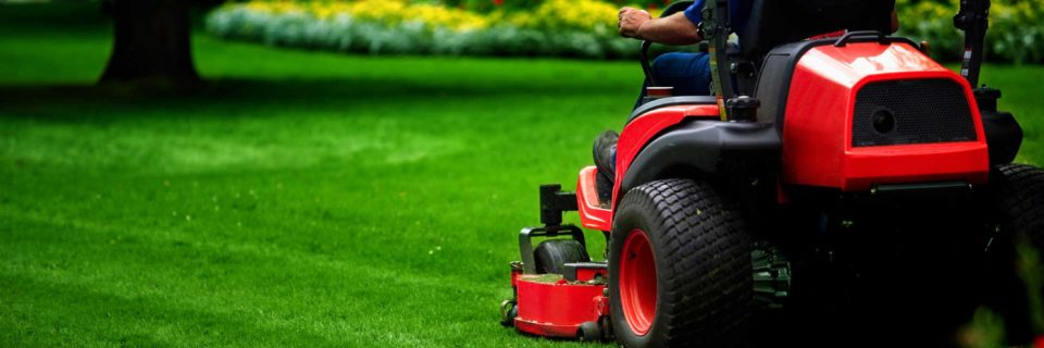 The Grass is Always Greener on a Holley Maintained Lawn